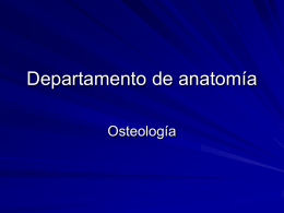 Diapositiva 1 - Luiszamora08's Blog
