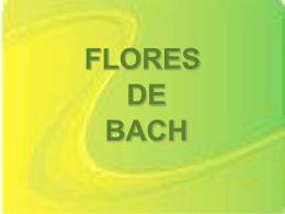 www.cuencanos.com