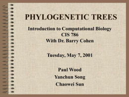 PHYLOGENETIC TREES - New Jersey Institute of Technology