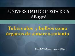 Universidad de Costa Rica AF-5408