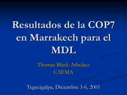 Resultados de la COP7 en Marrakech