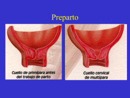 Preparto - obstetriciahual