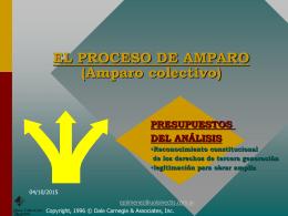 EL PROCESO DE AMPARO (Amparo colectivo)