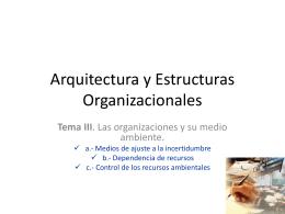 Arquitectura y Estructuras Organizacionales