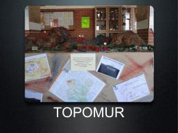 TOPOMUR
