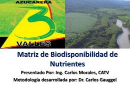Matriz de Biodisponibilidad de Nutrientes