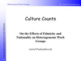 Multikulturelle Arbeitsgruppen in Organisationen