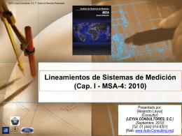 02 - MSA-4: 2010 - Auto Consulting