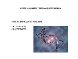 Diapositiva 1 - IBQ