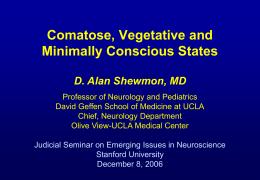 Brain Death: A Critical Reappraisal
