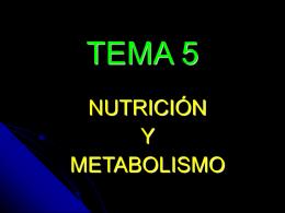 TEMA 13