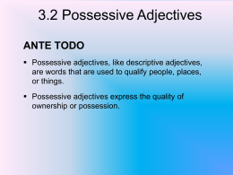 3.2 Possessive Adjectives