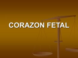 CORAZON FETAL
