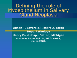 Defining the role of Myoepithelium in Salivary Gland …