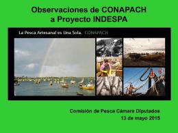 Observaciones de CONAPACH a Proyecto INDESPA