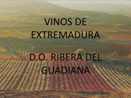 D.O. RIBERA DEL GUADIANA