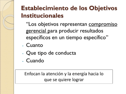 Establecimiento de los Objetivos Institucionales