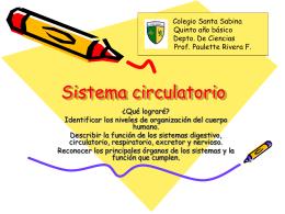 Sistema circulatorio - Colegio Santa Sabina