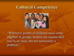 CULTURAL COMPETENCE - Minnesota State University …