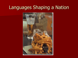 Language Shaping a Nation. The case of Belgium.