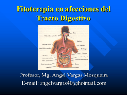 Fitoterapia en afecciones del Tracto Digestivo