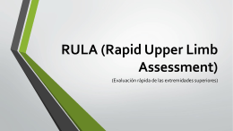 RULA (Rapid Upper Limb Assessment)