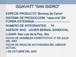 """GGAVATT """"SAN ISIDRO"""""""