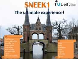 SNEEK - TU Delft Institutional Repository