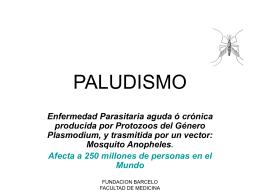 PALUDISMO - Pixelnet e