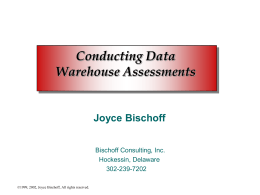 Data Warehouse Assessments