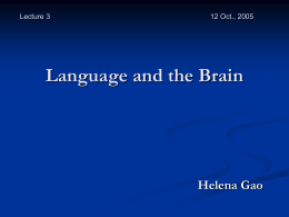 Chapter 9 Language and the Brain Second Edition …