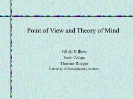 Point of View and Theory of Mind
