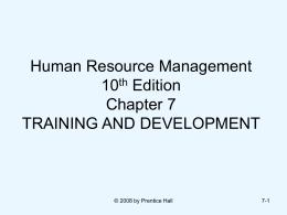 STRATEGIC HUMAN RESOURCE MANAGEMENT: AN …