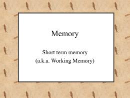 Memory - Villanova University