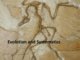 Evolutionary Theory - Susquehanna University