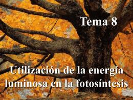 Tema 10 - OpenCourseWare de la Universidad de Oviedo