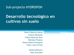 Sub-projecto HYDROPON