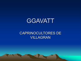 GGAVATT