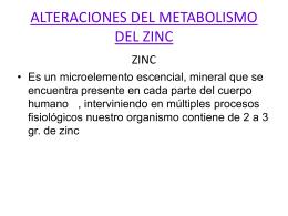 Alteraciones del Metabolismo Zinc Enfermedades Metabo