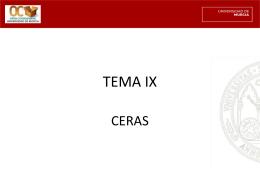 TEMA IX - OCW — Portal de contenidos y cursos abiertos …