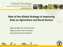 Role of the Global Strategy in Improving Data on