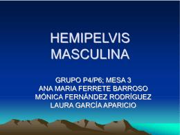 HEMIPELVIS MASCULINA