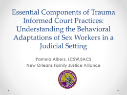 Essential Components of Trauma Informed Court Practices