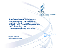 IP_ SMEs and Competitiveness - Najmia