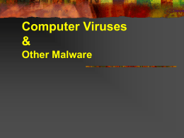 Computer Viruses & Other Malwares