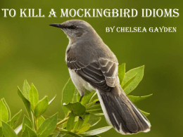 To Kill A Mockingbird Idioms