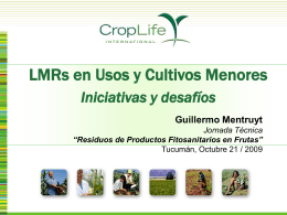 Challenges and Considerations for Minor Crop Approvals …