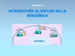Diapositiva 1 - QUIMICA | Licda. Sofia Tobias