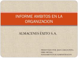 INFORME AMBITOS EN LA ORGANIZACION