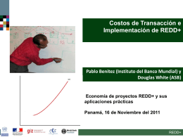 Transactions and implementation costs of REDD+